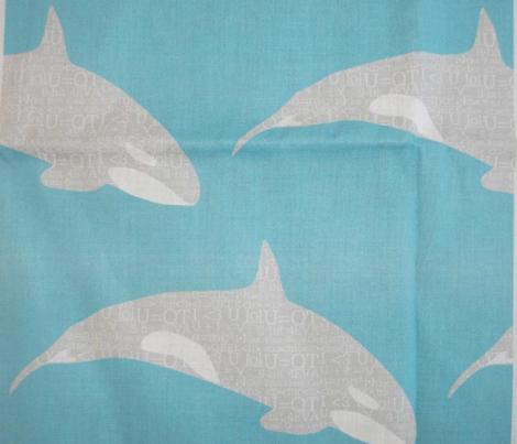Smart Orca Grey on Blue