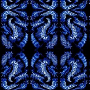 nudibranch_blueonblack