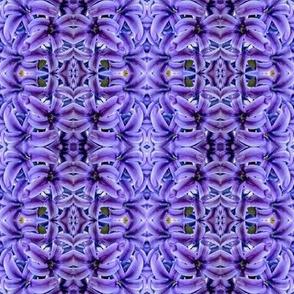 3967P purple high