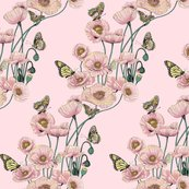 Poppies_and_butterflies_pastel_on_pale_pink_bg_shop_thumb