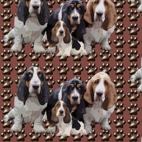 basset_hounds_group