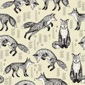 Rrrrnew_fox_khaki_shop_thumb