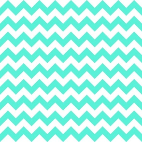 Mint Dark Chevron