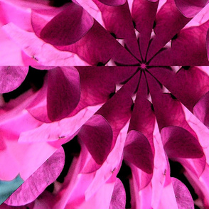 Pinwheel in pink and magenta