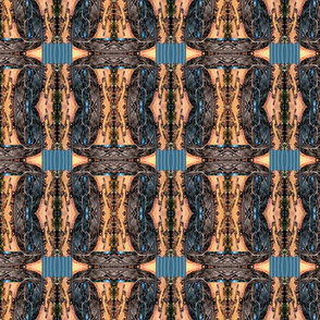blue madrona