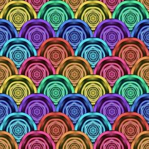 Wild Rainbow Dazzle