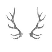 fois bois antlers