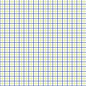 Pear_Gingham-Green_and_Purple