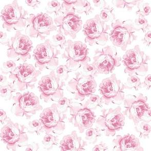 Stella in sorbet pink