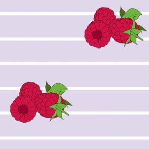 Raspberry Stripe
