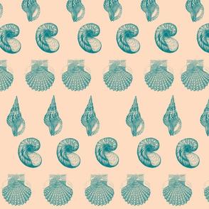Raspberry slushy shell