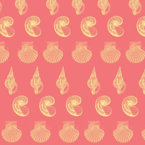 Raspberry lemonade shell