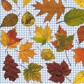 autumn leaves on gingham