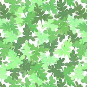Watermelon leaves