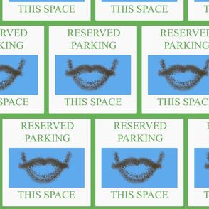 Stash_Parking