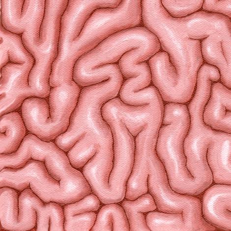 Natural Pink Big Brains
