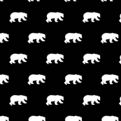 Bears white on black