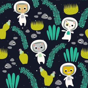 Galactic Garden Tour