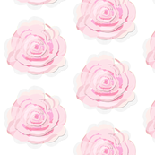 A_Shabby_Chic_Rose_soft