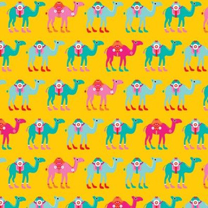 Colorful arabic desert Camel parade