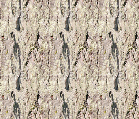 Bark 4_ fabric by koalalady on Spoonflower - custom fabric
