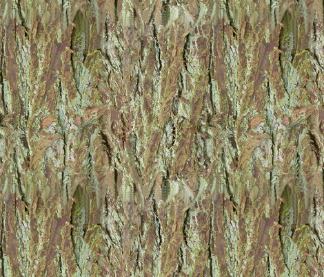 Bark fabric by koalalady on Spoonflower - custom fabric