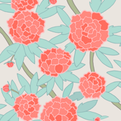 Paeonia in Mint and Coral