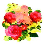 R3204442_rwatercolor_roses_on_white_shop_thumb