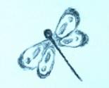 Rdragonflydesign_ed_thumb