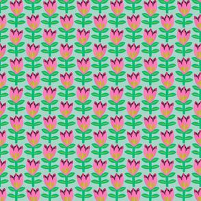 Tulipa - Mint - Small scale