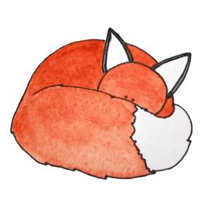 Warm Fox