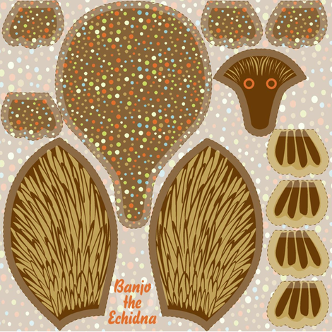 mini echidna on a swatch