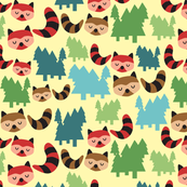 The Bandit Raccoons