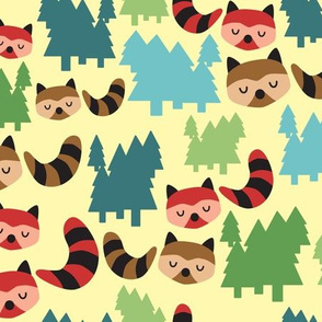 Forest Bandit Raccoons