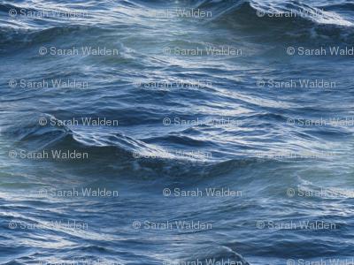 Siren of the Seas ~  Seadrift