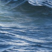 Rrsiren_of_the_seas___seadrift___peacoquette_designs___copyright_2014_shop_thumb
