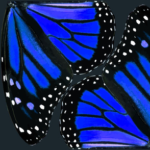 Blue Monarch Butterfly Wings