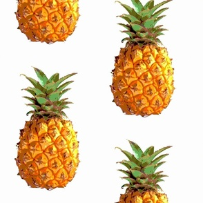 Extra Large Pineapples