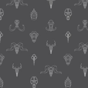 Geometry Animal Skulls #4