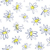 Rdaisies_white_shop_thumb