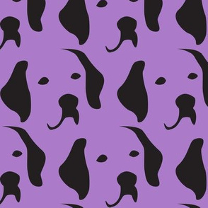 Labrador purple