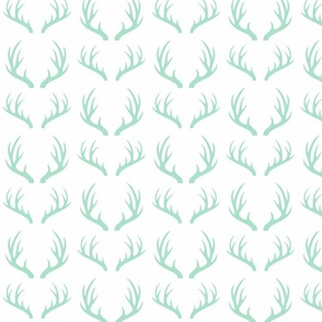 deer horns in mint
