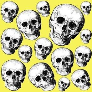 yellow skulls