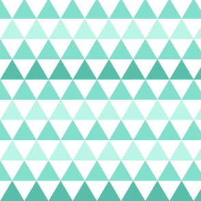Ombre Triangle Small Mint