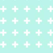 Mint Plus White