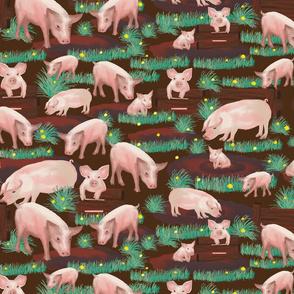 pig farm in mud