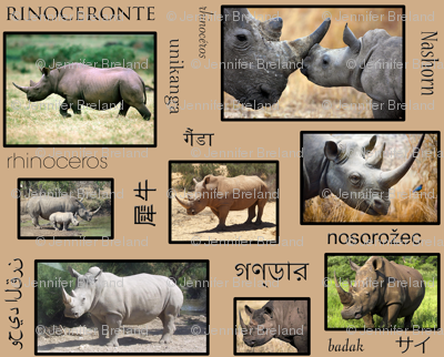 Rhinoceros-es-es-es