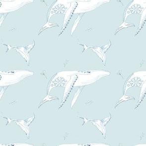 Humpback Whale Pattern