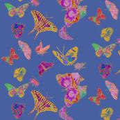 Ghana Butterflies on Steel Blue