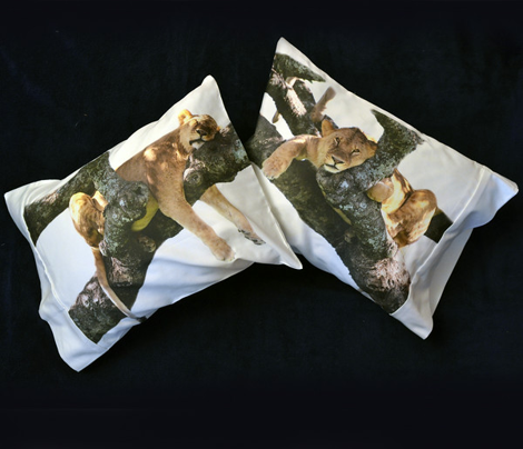 Three LION pillowcases